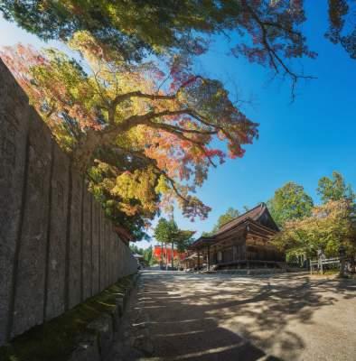 Прогулка по древнему японскому храму на горе Коя. Фото