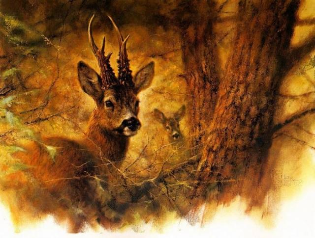 животные в живописи Rien Poortvliet - 05