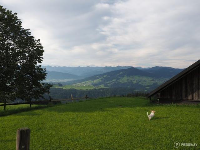 Фото: Великолепная природа Австрии (Фото)