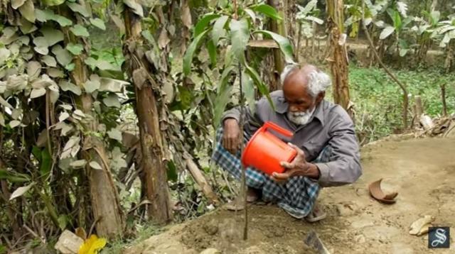 Абдул Самад не только сажает деревья, но и регулярно поливает их, и ухаживает за ними.