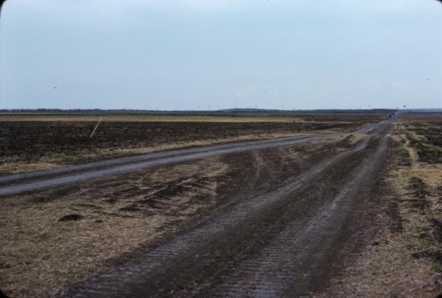 Поля возле колхоза в 50 км к югу от Ростова-на-Дону. СССР, Ростовская область, 1975 год.