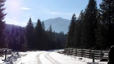 Утро в зимних Карпатах: яркие снимки. Фото
