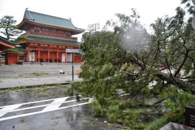 Последствия обрушившегося на Японию тайфуна в пугающих снимках. Фото