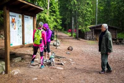 Как в Финляндии избавляются от мусора на природе. Фото