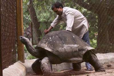 Так выглядят самые старые животные на планете. Фото