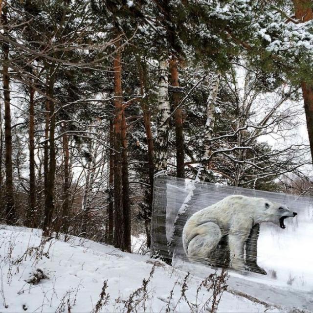 Стрит-арт на целлофане. Евгений Чес