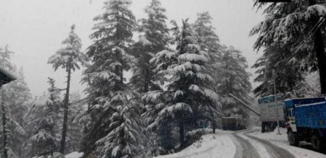 Впервые Индию за 10 лет засыпало снегом: фото - Фото